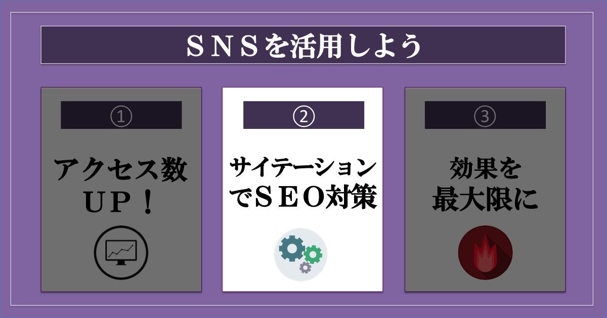 ブログのアクセス数を増やす方法SNS_サイテーション